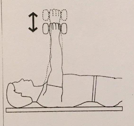 تقویت عضلات پشت