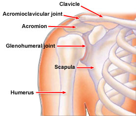 شکستگی و در رفتگی ناحیه شانه